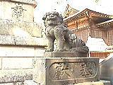 石神井氷川神社の狛犬