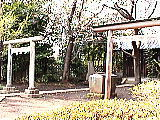 石神井氷川神社の鳥居